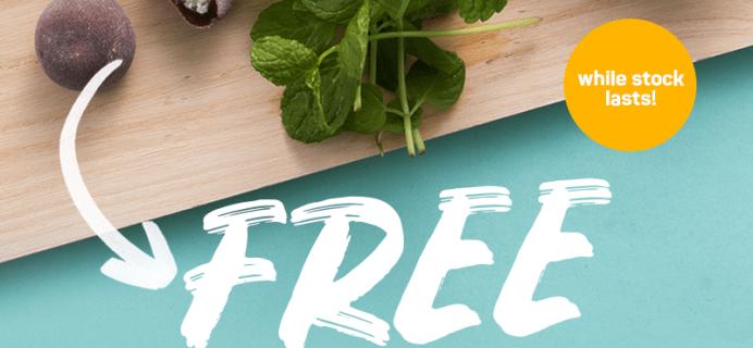 Tokyo Treat Coupon: FREE Japanese Chocolate Mint Mochi!