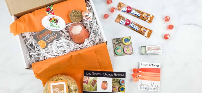 Fruit For Thought June 2018 Subscription Box Review & Coupon