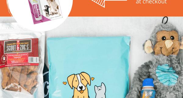 FREE Free Fou Stick with Pet Treater Dog Box Mini Subscription!