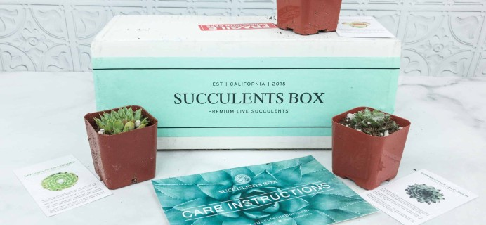 Succulents Box Black Friday Coupon: Get 25% Off!