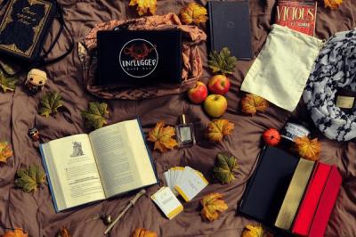 Unplugged Book Box November 2018 Spoiler #2!