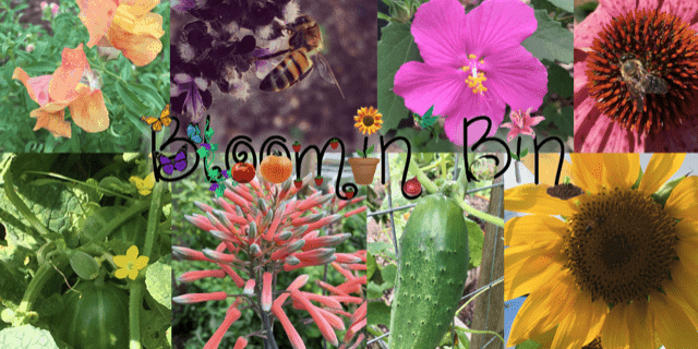 Bloomin' Bin Cyber Monday Deal: Get 15% off site wide!