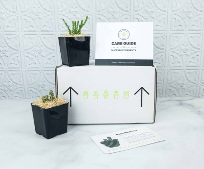 Succulent Studios Subscription Box Review + Coupon