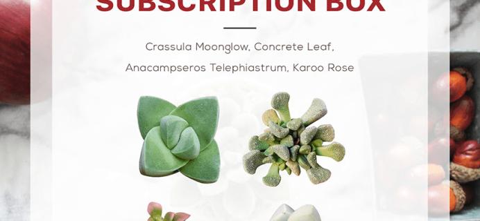 Succulents Box December 2018 Full Spoilers + Coupon!