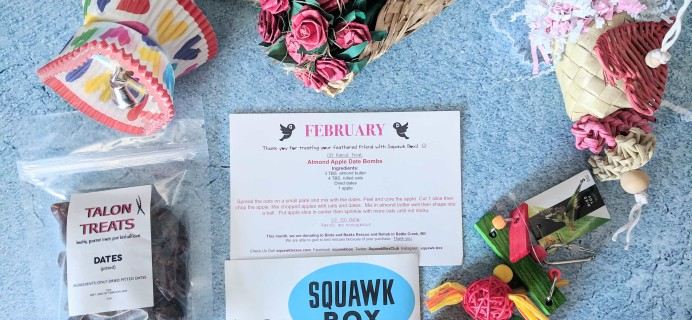 Squawk Box February 2019 Subscription Review