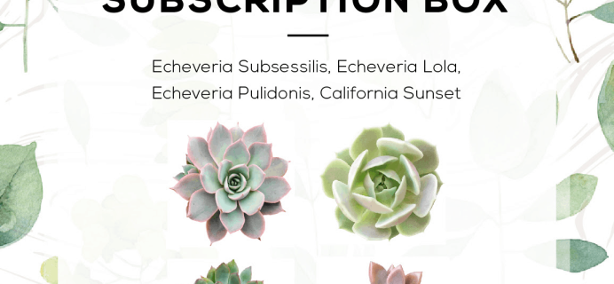 Succulents Box August 2019 Full Spoilers + Coupon!