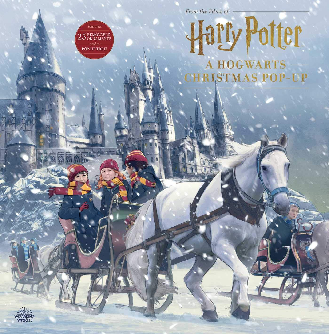 Christmas Calendar 2020 Barnes And Noble 2019 Harry Potter Pop Up Advent Calendar Available For Preorder