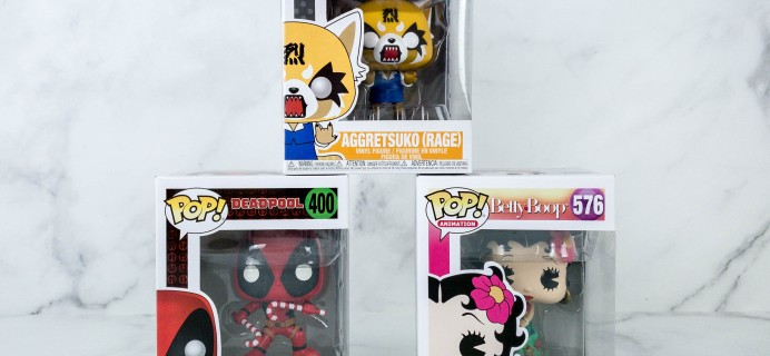 Pop In A Box November 2019 Funko Subscription Box Review & Coupon
