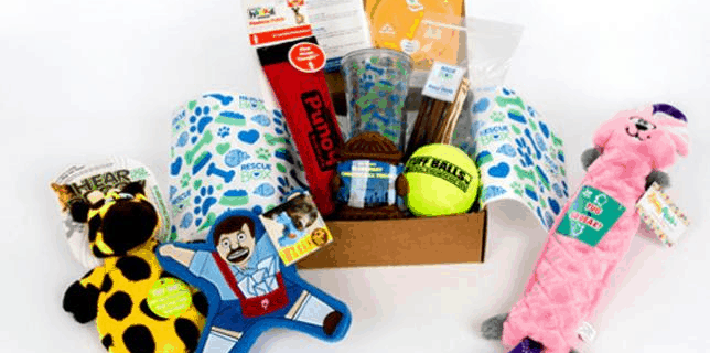 Rescue Box Deal: Get A FREE Month With 6+ Month Subscriptions!
