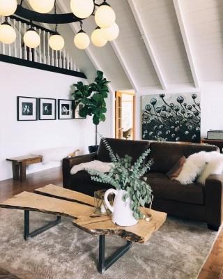 Eucalyptus Farms – Review? Plant Subscription + Coupon!