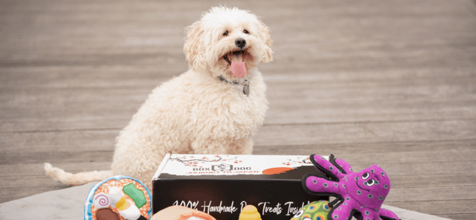 BoxDog Coupon: Get 75% Off Your First Box – LAST CHANCE!