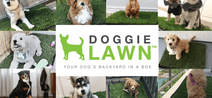 DoggieLawn Cyber Monday 2020 Sale: Get 30% Off First Real Grass Patio Potty!