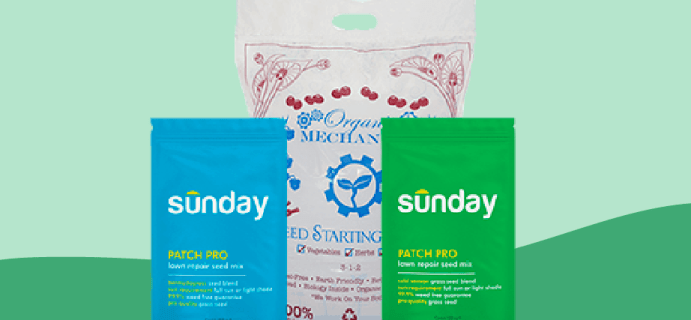 Sunday Patch Pro Lawn Repair Available Now + Coupon!