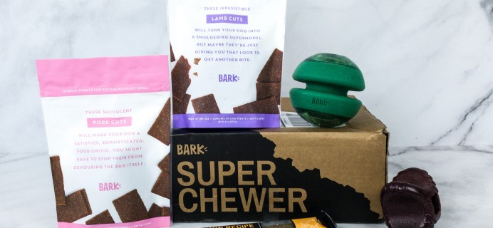 Super Chewer May 2020 Subscription Box Review + Coupon!