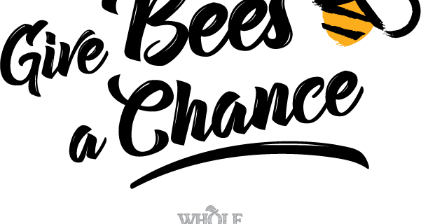 Whole Kids Foundation Give Bees A Chance Honeybee Activity Box Available Now + Full Spoilers!
