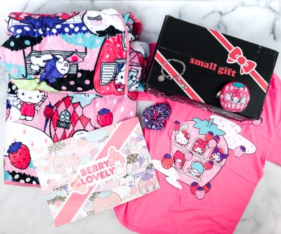 Hello Kitty and Friends February 2020 Subscription Box Review + Coupon!