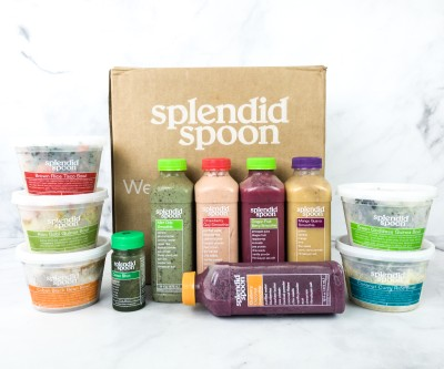 Splendid Spoon Review + Coupon – Summer 2020