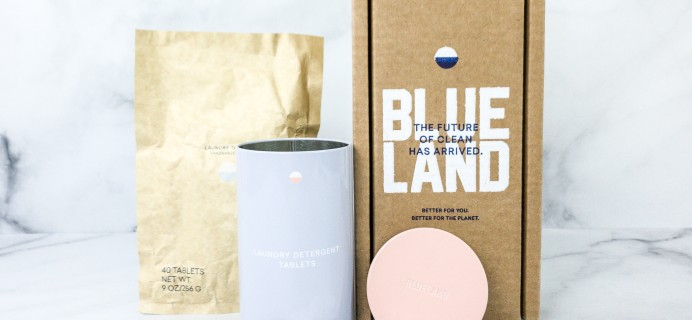 Blueland Naked Laundry Tablet Review