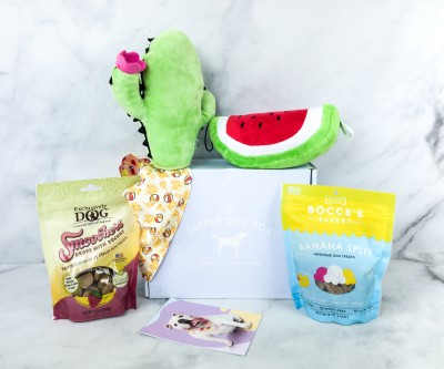 The Dapper Dog Box August 2020 Subscription Box Review + Coupon