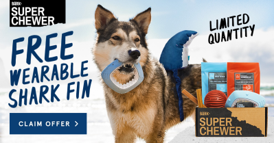 BarkBox Super Chewer Coupon: Get FREE Shark Fin Wearable With Subscription!