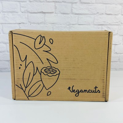 Vegancuts Snack Box August 2020 Subscription Box Review
