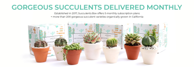 Succulents Box Coupon: Get $5 Off!