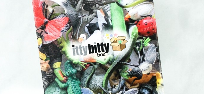 Itty Bitty Box Black Friday Deal: Get 25% Off!
