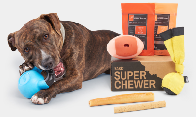BarkBox Super Chewer Friends & Family Sale: Get 50% Off Your First Month!