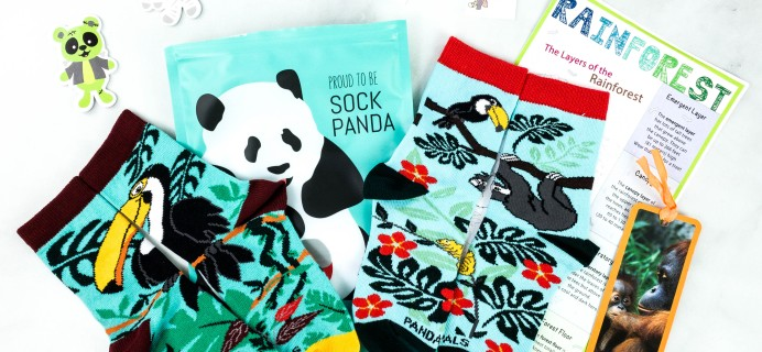 Panda Pals Black Friday Deal: Get 30% Off Any Subscription!