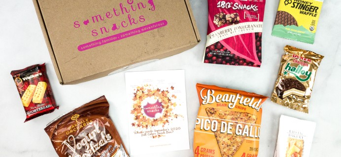 Something Snacks September 2020 Subscription Box Review + Coupon