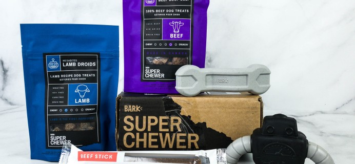 Super Chewer October 2020 Subscription Box Review + Coupon!