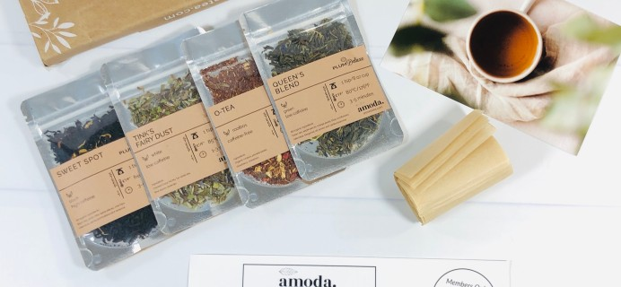 Amoda Tea November 2020 Subscription Box Review + Coupon!