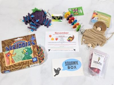 Squawk Box November 2020 Subscription Review