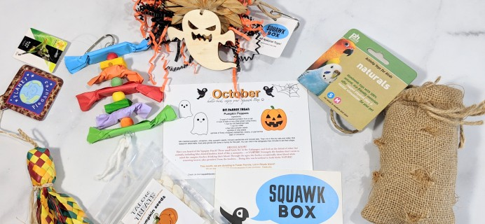 Squawk Box October 2020 Subscription Review