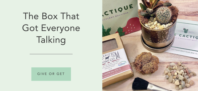 The Cactique Black Friday Sale: Save 25% on your entire subscription!