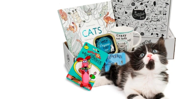 Cattitude Box Black Friday Sale: Save 25% on your entire subscription!