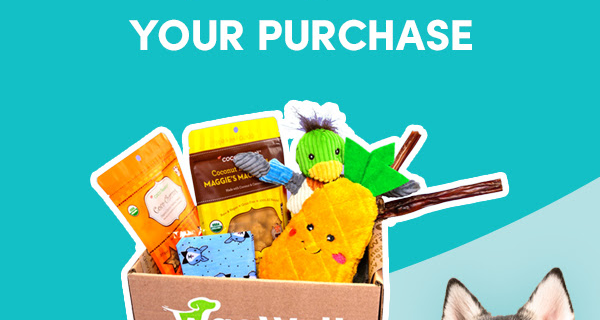 WagWell Box Black Friday Deal: Get $10 Off + Guaranteed Thanksgiving Day Themed Box!