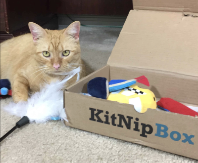 KitNipBox Cyber Monday Deal: 25% Off First Month!