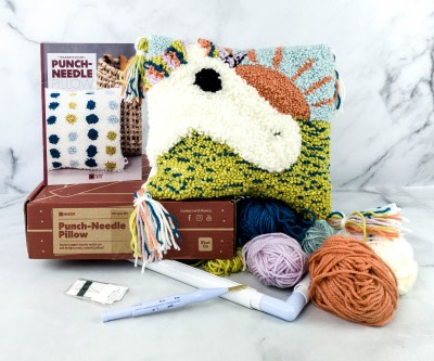 Maker Crate Review + Coupons – PUNCH-NEEDLE PILLOW