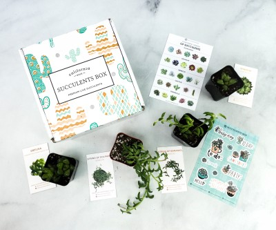 Succulents Box Cyber Monday Deal: Save 30% On All Subscriptions!