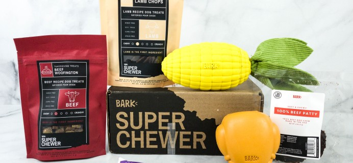 Super Chewer November 2020 Subscription Box Review + Coupon!