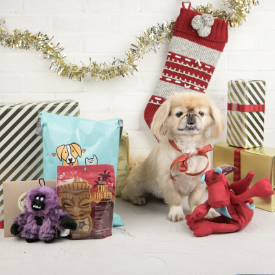 Pet Treater Holiday Coupon: Get 55% Off First Box!