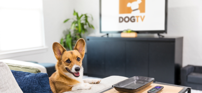 DOGTV Coupon: Get 30 Days FREE Trial!