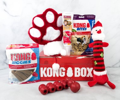 Kong Box Review + Coupon – December 2020