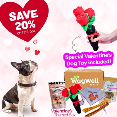 WagWell Box Coupon: Get 20% Off + Guaranteed Valentine's Day Themed Box!