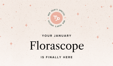 The Bouqs January 2021 Bouq of the Month Reveal + Coupon!