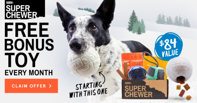 BarkBox Super Chewer Coupon: Get FREE Extra Toys + Ski Themed Limited Edition Box!
