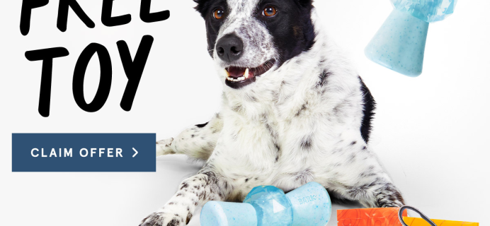 BarkBox Super Chewer Coupon: Get FREE Treat Dispensing Toy with Valentine's Day Themed Box!