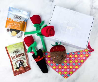 The Dapper Dog Box Review + Coupon – February 2021