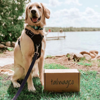 Tailwagco – Review? Dog Subscription!